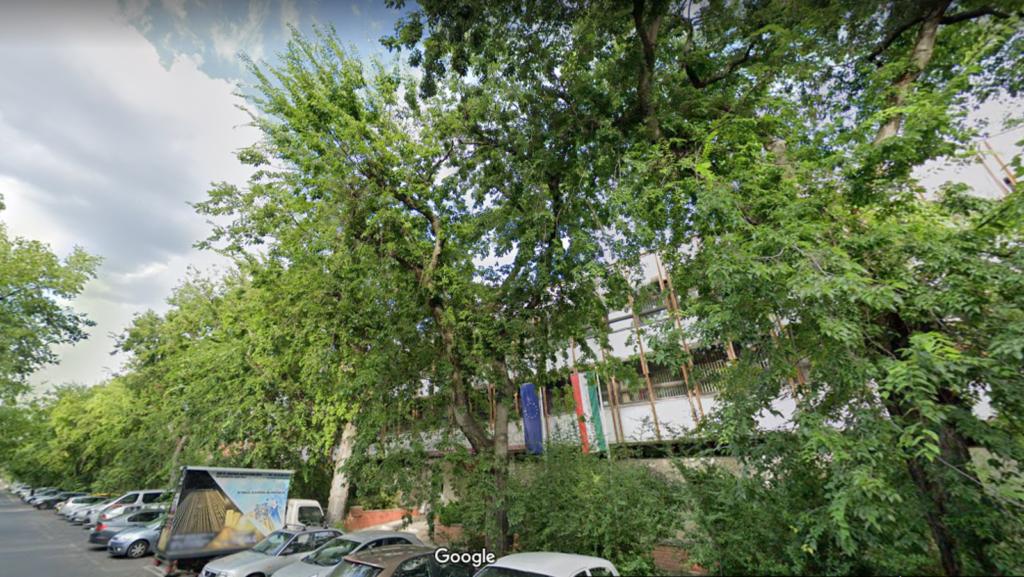 NEHITI-Google-maps